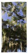 Live Oak Dripping With Spanish Moss Beach Towel