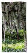 Live Oak Tree II Beach Towel
