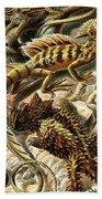 Lizard Detail II Beach Towel