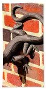 Lizard In The Sun Beach Towel