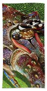 lobster season Re0027 Beach Towel by Carey Chen