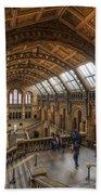 London Natural History Museum Beach Sheet