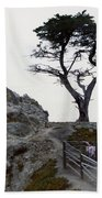 Lone Cypress 1970 Beach Towel