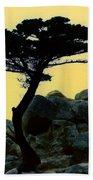 Lone Cypress Companion Beach Towel