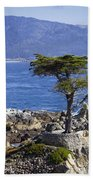 Lone Cypress Tree Beach Towel