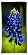 Lone Star Bluebonnet Beach Towel
