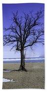 Lone Tree At Fort Gratiot Light House  Beach Towel
