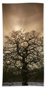 Lone Tree Beach Towel by Amanda Elwell