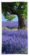 Lone Tree In Lavender Beach Towel