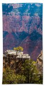 Lone Tree On Outcrop Grand Canyon Beach Towel