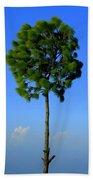 Lone Tree Beach Sheet
