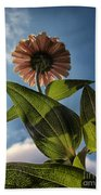 Lone Zinnia 01 Beach Towel