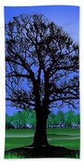 Lonely Old Tree Beach Towel