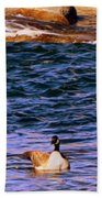 Lonely Swimmer Beach Towel
