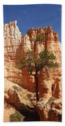Lonely Trees Beach Towel