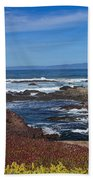 Lonesome Gull Beach Towel
