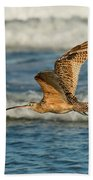 Long-billed Curlew Flying Over The Surf Beach Towel