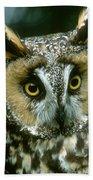 Long-eared Owl Up Close Beach Towel