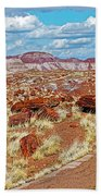 Long Logs Trail In Rainbow Forest In Petrified Forest National Park-arizona  Beach Towel