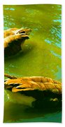 Long Neck Ducks Beach Towel
