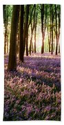 Long Shadows In Bluebell Woods Beach Towel