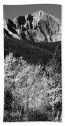 Longs Peak 14256 Ft Beach Sheet