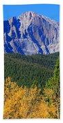 Longs Peak Autumn Aspen Landscape View Beach Towel