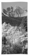 Longs Peak Autumn Scenic Bw View Beach Towel