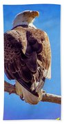 Looking Right Beach Towel by Bob Hislop