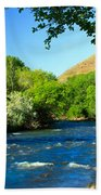 Looking Up Pine Creek Beach Towel