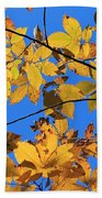 Looking Up To Yellow Leaves Beach Towel