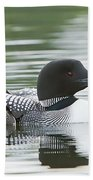 Loon Chick Rise And Shine Beach Towel