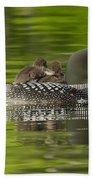 Loon Chicks - Best Buddies Beach Towel