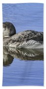 Loon On Vacation Beach Towel