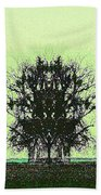 Lord Of The Trees Beach Towel