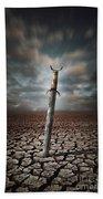 Lost Sword Beach Towel by Carlos Caetano