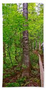 Lots Of Steps On La Chute Trail In Forillon Np-qc Beach Towel
