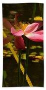 Lotus Flower At The West Lake Beach Towel