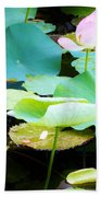 Lotus Lilly Pond Beach Towel