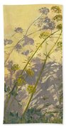 Lovage Clematis And Shadows Beach Towel