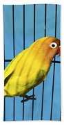 Love Bird Beach Towel