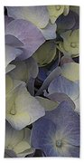 Lovely In Blue And White - Hydrangea Beach Towel