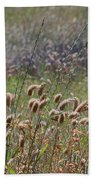Lovely Layers Of Grass Beach Towel