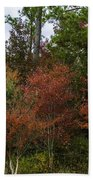 Lowcountry Fall Color Beach Towel