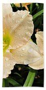 Lullaby Baby Daylilies Beach Towel