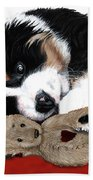 Lullaby Berner And Bunny Beach Towel by Liane Weyers