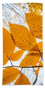 Luminescent Leaves Beach Towel