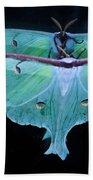 Luna Moth Mirrored Beach Towel