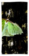 Luna Moth On Tree Beach Towel