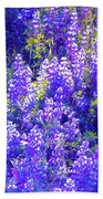 Lupine 2 Beach Towel